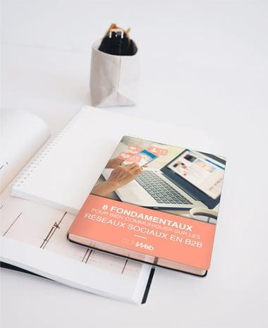guide communiquer sur les reseaux sociaux B2B copie